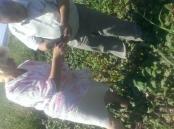 Провідний фахівець - агроном відділу фітосанітарних процедур Костюк О.П. проводить обстеження посівів буряка