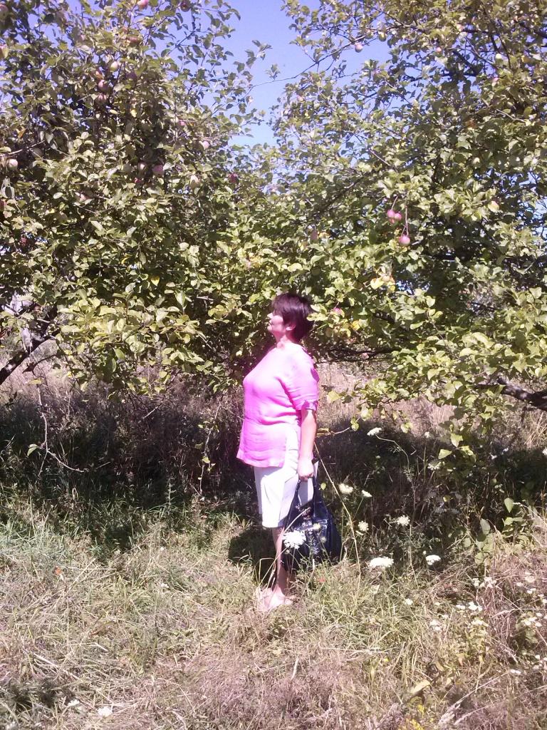 Провідний фахівець - агроном відділу фітосанітарних процедур Варениця Л.В. проводить обстеження  саду на виявлення заселення яблуневою міллю