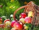 Свіжі яблука до нового врожаю