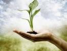 Відділ визначення посівних якостей  насіння і товарних якостей садивного матеріалу