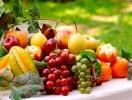Прогноз фітосанітарного стану основних с/г рослин у господарствах Тернопільської області в серпні 2016 року